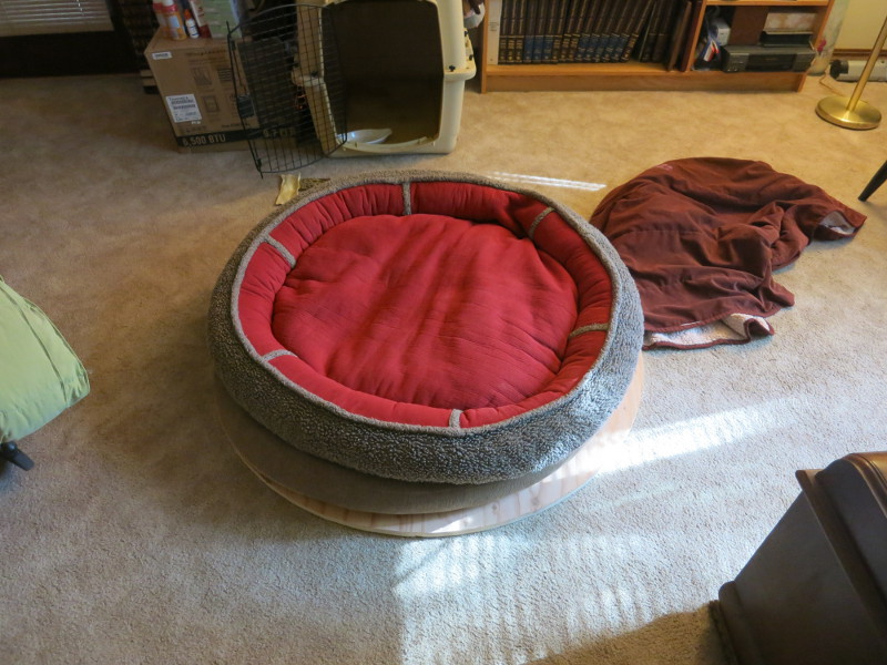 Test-fitting the dog bed to the top plywood circle