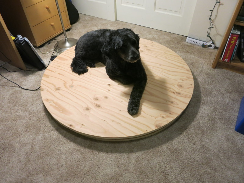 Pippa resting on the assembled scale